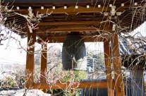 大応寺ギャラリー17
