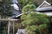大応寺ギャラリー22